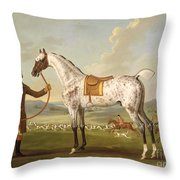 Scipio - Colonel Roche's Spotted Hunter Throw Pillow by Thomas Spencer