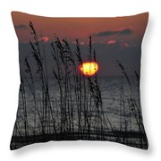 Sea Oats Throw Pillow by David Lee Thompson