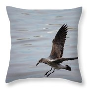 Seagull Landing Throw Pillow by Carol Groenen