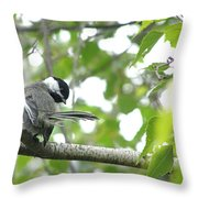 Second Glance Throw Pillow by Angie Rea