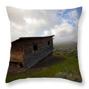 Seen Better Days Throw Pillow by Mike  Dawson