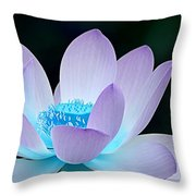 Serene Throw Pillow by Photodream Art