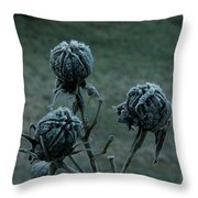 Shadowy Frozen Pods From The Darkside Throw Pillow by Douglas Barnett