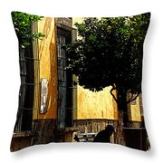 Shady Bench Throw Pillow by Mexicolors Art Photography