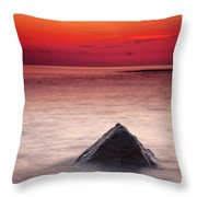 Shark Fin Throw Pillow by Evgeni Dinev