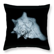 Shell Throw Pillow by Amber Flowers