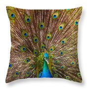 Showing Your Colors Throw Pillow by Mike  Dawson