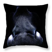 Silverback . Photoart . R7917 Throw Pillow by Wingsdomain Art and Photography