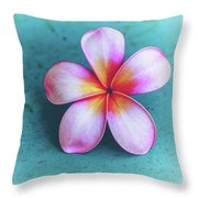 Simplicity Throw Pillow by Jade Moon