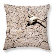 Skull In Desert 2 Throw Pillow by Kelley King