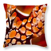 Slate Pencil Urchin Throw Pillow by Dave Fleetham - Printscapes