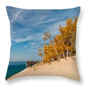 Sleeping Bear Overlook Throw Pillow by Larry Carr