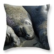 Slumber Party Throw Pillow by Methune Hively