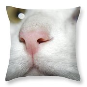 Snif-snif Throw Pillow by Svetlana Sewell