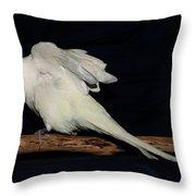 Snowflake Throw Pillow by Robert Morin