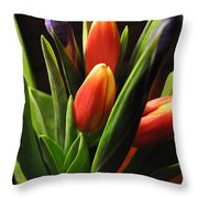 Soft Fireworks Throw Pillow by Luke Moore