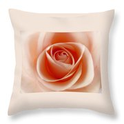 Soft Rose Throw Pillow by Steve Williams