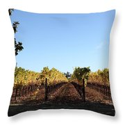 Sonoma Vineyards - Sonoma California - 5D19314 Throw Pillow by Wingsdomain Art and Photography