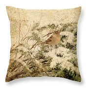 Sparrow In Winter I - Textured Throw Pillow by Angie Tirado