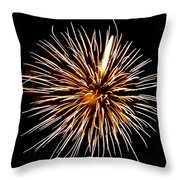 Spider Ball Throw Pillow by Phill Doherty