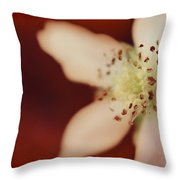 Spirit Throw Pillow by Laurie Search