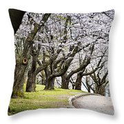 Spring Apple Orchard Throw Pillow by Elena Elisseeva