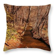 Spring At Red Rock Crossing Throw Pillow by Marilyn Smith