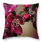 Spring Throw Pillow by Charles Muhle