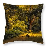 Spring Outing Throw Pillow by Jessica Jenney