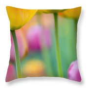 Springtime Throw Pillow by Silke Magino