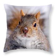 Squirrel Portrait Throw Pillow by Mircea Costina Photography