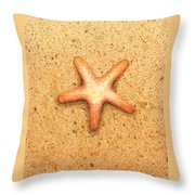 Star Fish Throw Pillow by Katherine Young-Beck