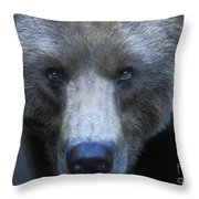 Stare Down Throw Pillow by Sandra Bronstein