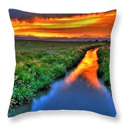 Stream Of Light Throw Pillow by Scott Mahon