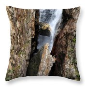 Stuck In The Middle Throw Pillow by Christine Till