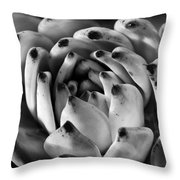 Succulent Petals Black and White Throw Pillow by Kelley King