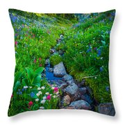 Summer Creek Throw Pillow by Inge Johnsson