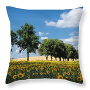 Sunflower Field 2 Throw Pillow by SK Pfphotography