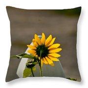 Sunflower Morning Throw Pillow by Douglas Barnett