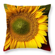 Sunflower with old key Throw Pillow by Garry Gay