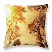 Sunlit Tree Tops Throw Pillow by Wim Lanclus