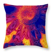 Sunny And Wild Throw Pillow by Stephen Anderson