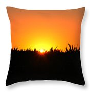 Sunrise Over Corn Field Throw Pillow by Bill Cannon