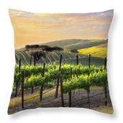 Sunset Vineyard Throw Pillow by Sharon Foster