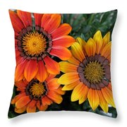 Surprise Throw Pillow by Carol Sweetwood