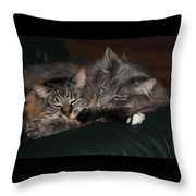 Sweet Dreams Throw Pillow by Shane Bechler