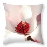 Sweet Magnolia Throw Pillow by Carol Groenen