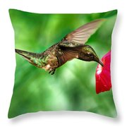 Sweet Satisfaction Throw Pillow by Christina Rollo