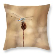Sweet Solitude Throw Pillow by Carol Groenen