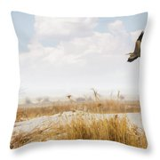 Takeoff Throw Pillow by Priscilla Burgers